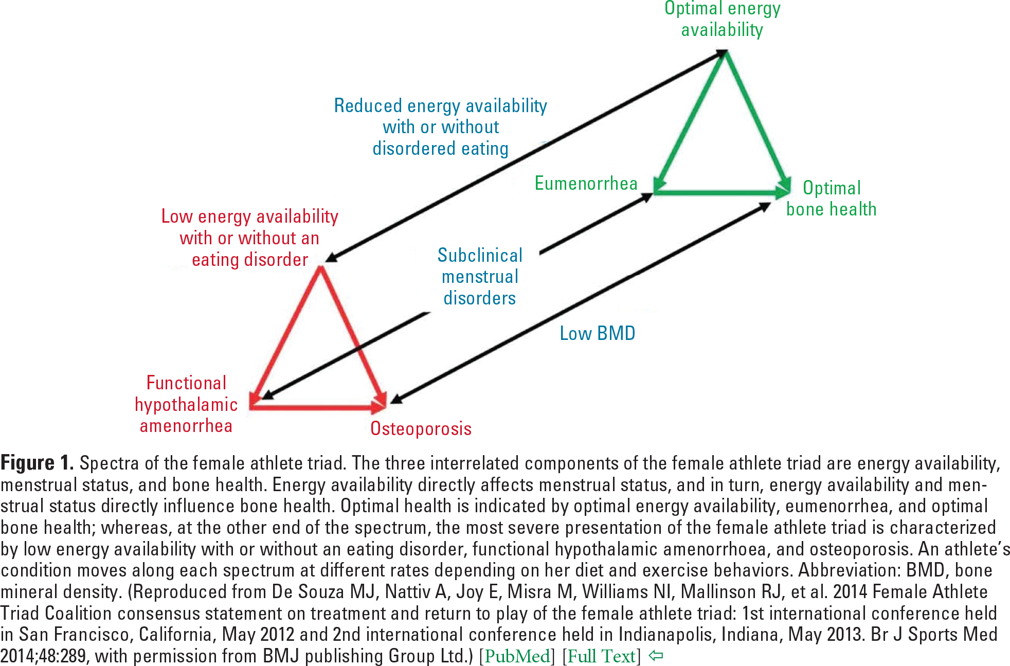 Figure 1. Spectra of the female athlete triad. The three interrelated components of the female athlete triad are energy availability, menstrual status, and bone health. Energy availability directly affects menstrual status, and in turn, energy availability and menstrual status directly influence bone health. Optimal health is indicated by optimal energy availability, eumenorrhea, and optimal bone health; whereas, at the other end of the spectrum, the most severe presentation of the female athlete triad is characterized by low energy availability with or without an eating disorder, functional hypothalamic amenorrhoea, and osteoporosis. An athlete's condition moves along each spectrum at different rates depending on her diet and exercise behaviors. Abbreviation: BMD, bone mineral density. (Reproduced from De Souza MJ, Nattiv A, Joy E, Misra M, Williams NI, Mallinson RJ, et al. 2014 Female Athlete Triad Coalition consensus statement on treatment and return to play of the female athlete triad: 1st international conference held in San Francisco, California, May 2012 and 2nd international conference held in Indianapolis, Indiana, May 2013. Br J Sports Med 2014;48:289, with permission from BMJ publishing Group Ltd.) [ PubMed ] [ Full Text ]