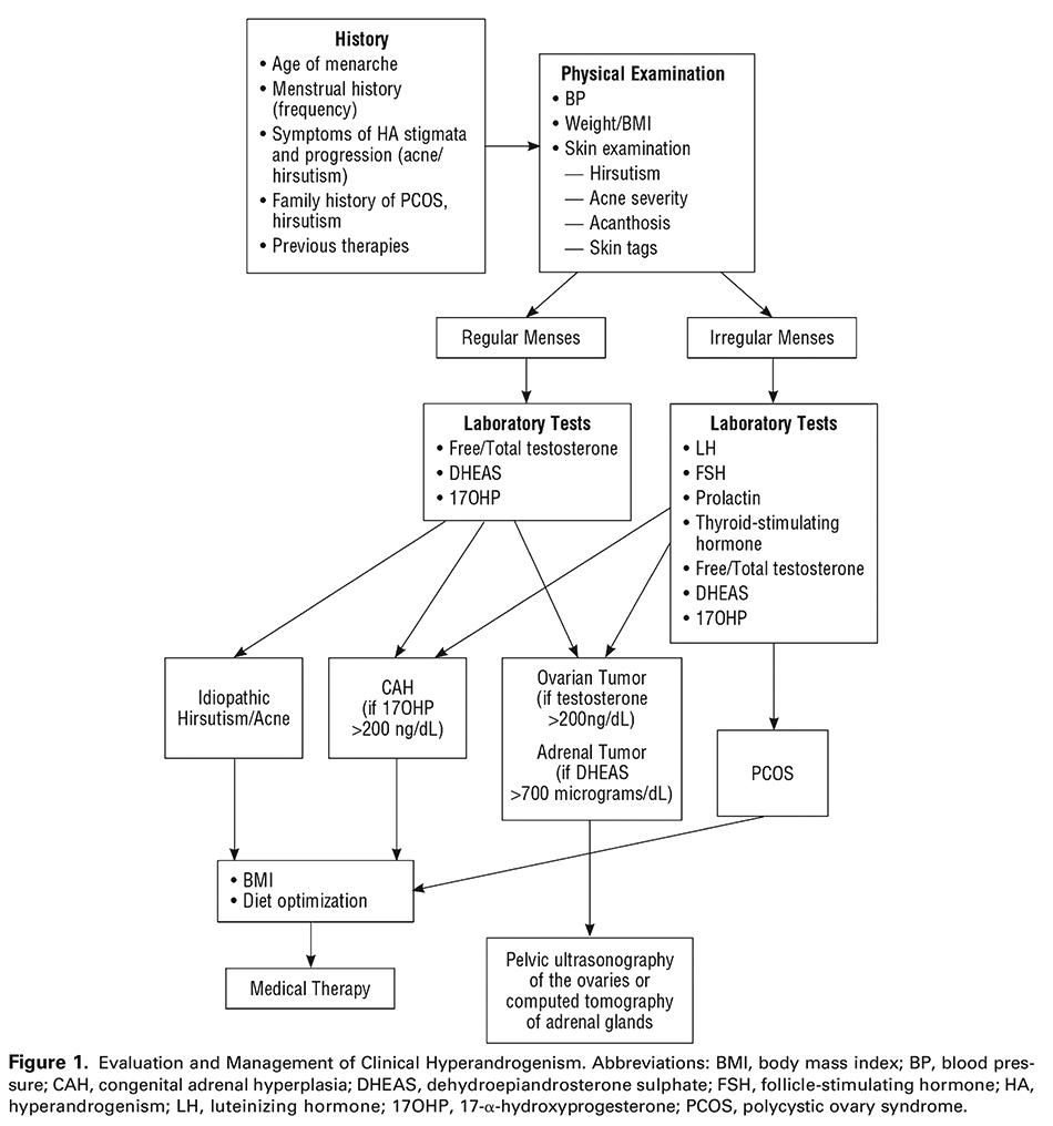 Figure 1. Evaluation and Management of Clinical Hyperandrogenism. Abbreviations: BMI, body mass index; BP, blood pressure; CAH, congenital adrenal hyperplasia; DHEAS, dehydroepiandrosterone sulphate; FSH, follicle-stimulating hormone; HA, hyperandrogenism; LH, luteinizing hormone; 17OHP, 17-α-hydroxyprogesterone; PCOS, polycystic ovary syndrome.