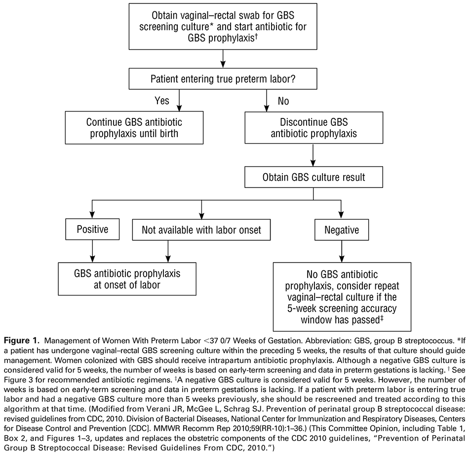 Prevention of Group B Streptococcal Early-Onset Disease in Newborns
