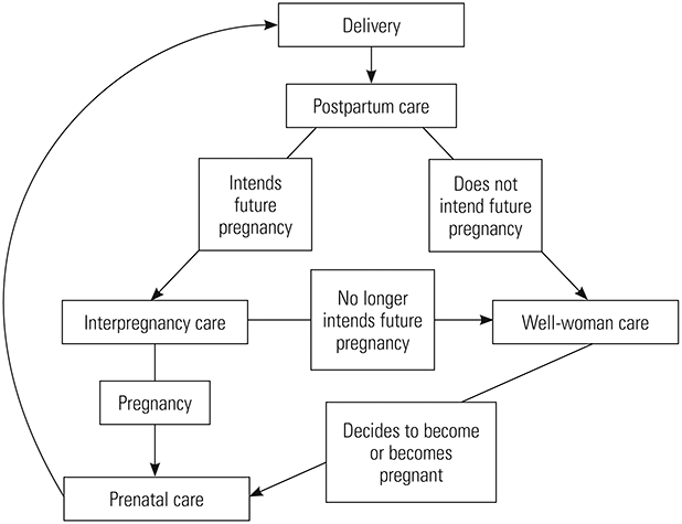 Figure 1. Interpregnancy Care Within the Continuum of Care.