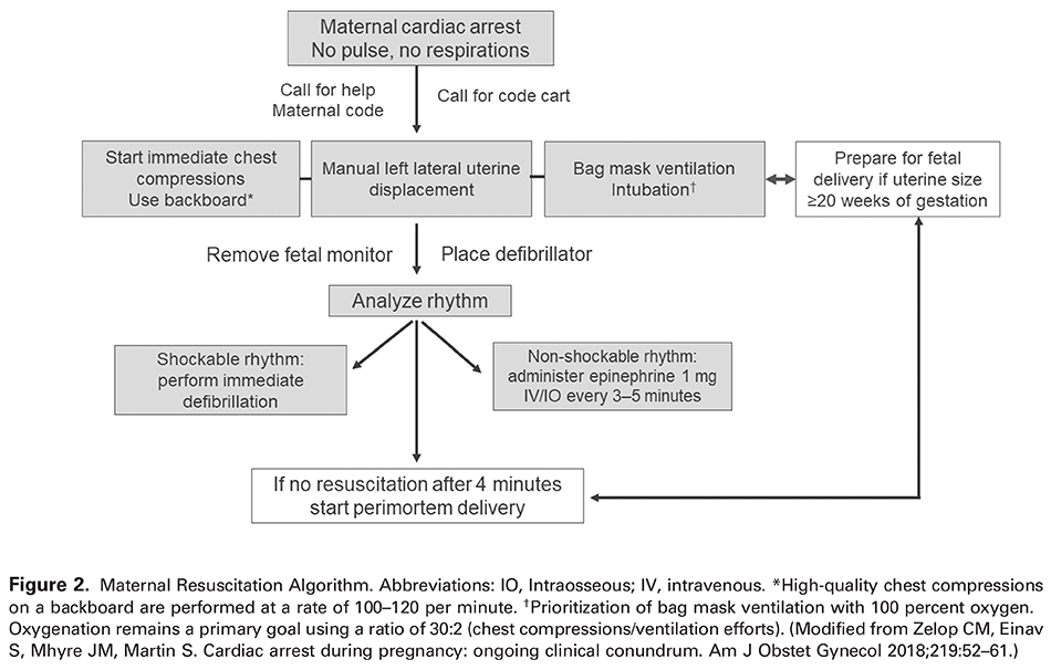 Figure 2. Maternal Resuscitation Algorithm. Abbreviations: IO, Intraosseous; IV, intravenous. *High-quality chest compressions on a backboard are performed at a rate of 100–120 per minute. † Prioritization of bag mask ventilation with 100 percent oxygen. Oxygenation remains a primary goal using a ratio of 30:2 (chest compressions/ventilation efforts). (Modified from Zelop CM, Einav S, Mhyre JM, Martin S. Cardiac arrest during pregnancy: ongoing clinical conundrum. Am J Obstet Gynecol 2018;219:52–61.)
